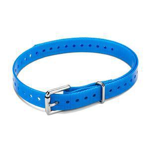 Halsband blauw